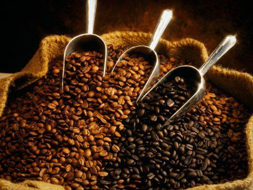 Какой выбрать кофе в зернах?