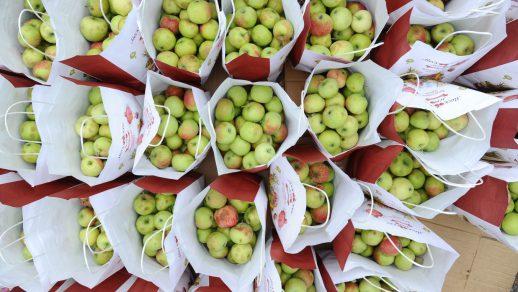 Купить яблоки с доставкой - это удобно и быстро